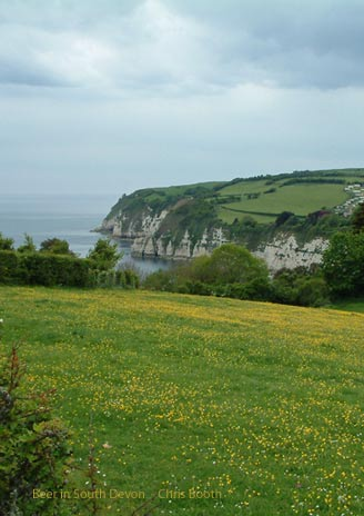 cottages to rent for 12 in Devon England